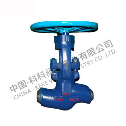 High temperature and high pressure power station valve